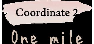 Coordinate 2 One mile